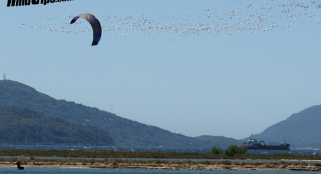 kitetrips in Corfu